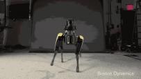 """""""网红""""波士顿动力的商业化探索:量产SpotMini,打造机器人应用..."""